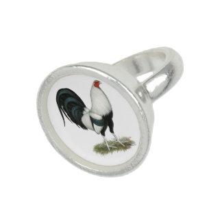 Zilveren Kemphaan Duckwing Foto Ring