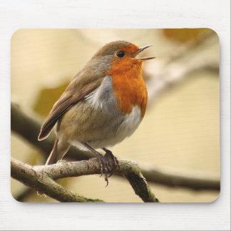 Zingende Robin Muismatten