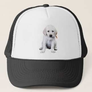 Zitting Labrador Trucker Pet