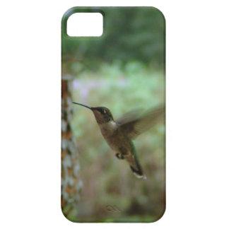 Zoemende vogel in motie iPhone 5 hoesjes