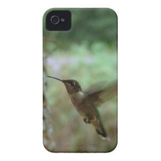 Zoemende vogel in motie iPhone 4 hoesjes