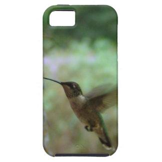 Zoemende vogel in motie iPhone 5 covers