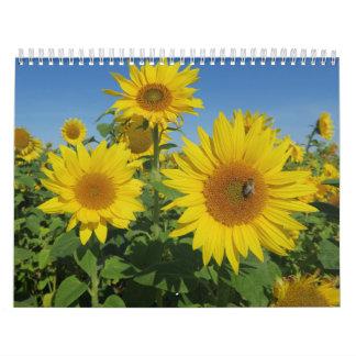 zonnebloem in de blauwe bloesem van de hemel kalender