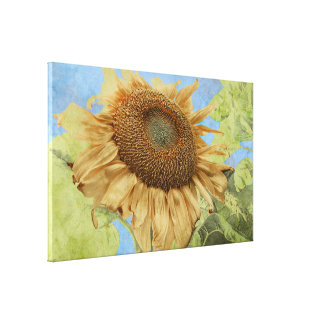 Zonnebloem tegen blauwe hemel met geweven canvas print