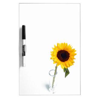Zonnige bloemen heldere de bloemfoto van de Zonneb Whiteboards
