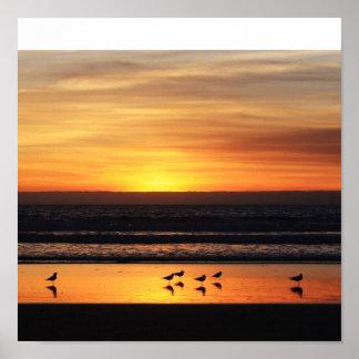 Zonsondergang in Californië Poster