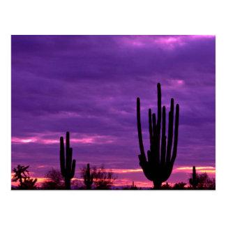 Zonsondergang, Scottsdale, Arizona Briefkaart