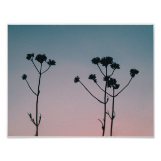 zonsondergang silhouet poster