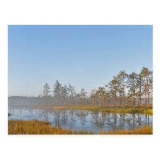Zonsopgang bij Viru Moeras, Estland Briefkaart