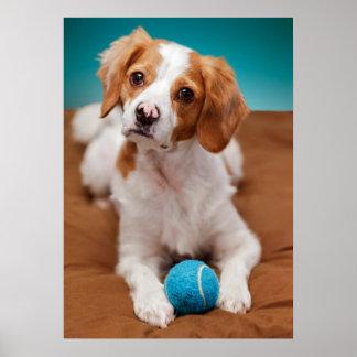 Zult u bal met me spelen? poster