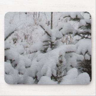 Zware Sneeuw Behandelde Pijnbomen Muismat
