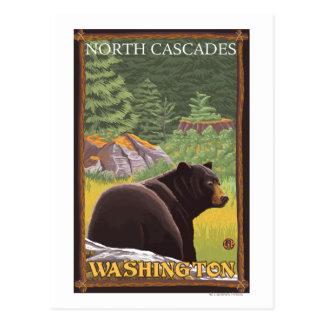 Zwart draag in Bos - de Cascades van het Noorden, Briefkaart