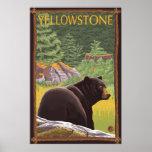 Zwart draag in Bos - Nationaal Park Yellowstone