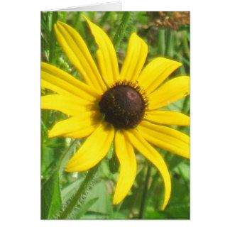 Zwart-eyed Susan Note Card Kaart