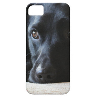 Zwart Labrador Barely There iPhone 5 Hoesje