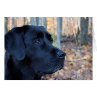 Zwart Labrador - de Gloed van de Herfst Kaart