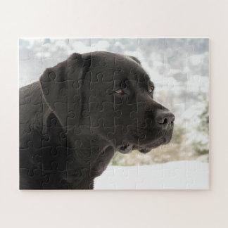 Zwart Labrador - het Staren Uitzichten Puzzel
