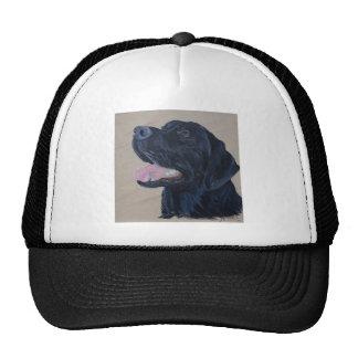 Zwart Labrador Petten Met Netje