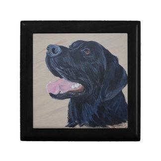 Zwart Labrador Vierkant Opbergdoosje Small