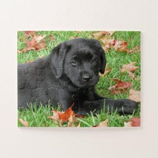 Zwart Labrador - Vreugde van de Herfst Puzzel