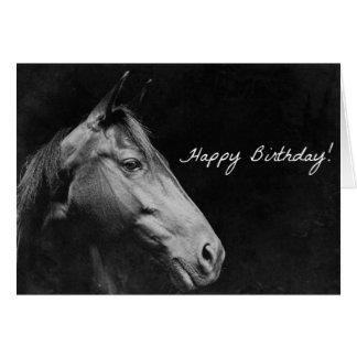 Zwart Paard Verjaardag Grunge Kaart