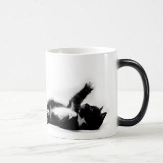 Zwart-wit katje op kleuren veranderende mok