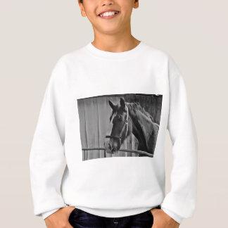 Zwart Wit Paard - het Dierlijke Art. van de Trui