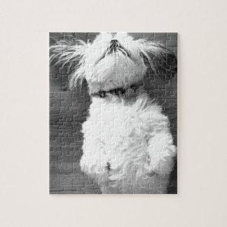 Zwart-wit Puppy shih-Tzu Puzzels