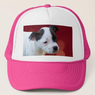 Zwart-wit Puppy Staffy, Trucker Pet