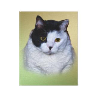 Zwart-witte Vette Kat Canvas Afdrukken