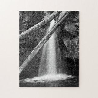 Zwart-witte waterval legpuzzel