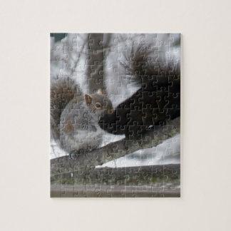 Zwarte Eekhoorn Puzzel