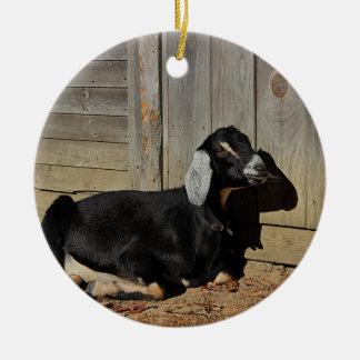 Zwarte geit rond keramisch ornament