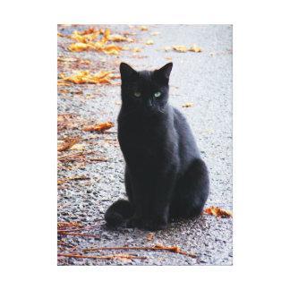 Zwarte Kat in het Canvas van de Herfst