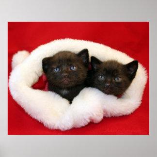 Zwarte katjes in het pet van de Kerstman Poster