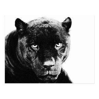 Zwarte Panter Jaguar Briefkaart