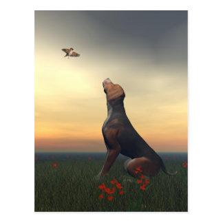 Zwarte tan hond die vogel het vliegen kijken briefkaart