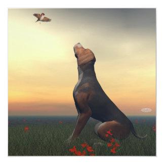 Zwarte tan hond die vogel het vliegen kijken kaart