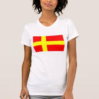 Zweedse het spreken Finnen etnische vlag T Shirt